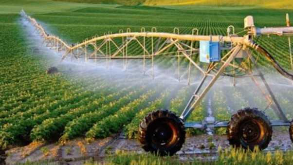 Tự động hóa – Hướng đi cho nền nông nghiệp thông minh